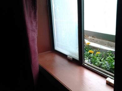 Flower box 2016-05-17