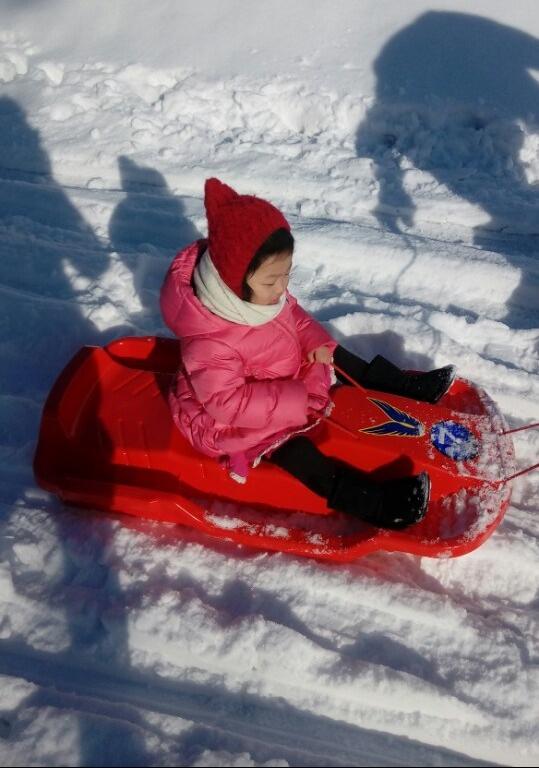 SAE-AH sled