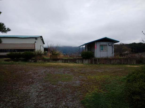 Abandoned Ranch Up For Grabs